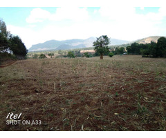 26 acres agricultural land