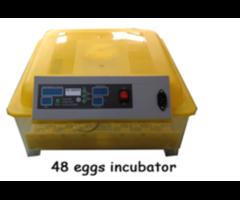 48 chicken icubator/132 quail eggs incubator