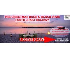 Pre-Christmas Bush & Beach Diani South Coast Holiday