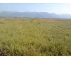 250 Acres Prime Land Chemelil Kisumu
