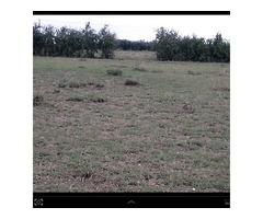 Kitengela Greennview Gardens plots for sale