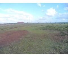Kenol 50x100 plots for Sale