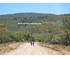 Jamhuri Day Hike to William Hill 12th December 2015