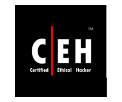 Certified Ethical Hacker Training Course in Nairobi, Kenya