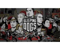 SleepingDogs Computer Game.