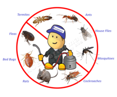 Bedbugs & Fumigation services at Florascape