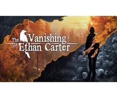 Vanishing of Ethan Carter COMPUTER Game.