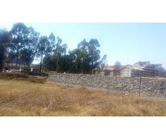 Quarter acre plots for sell along Kiambu rd.L5.