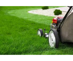 Mowing services in Nairobi