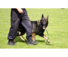 BEST AND AFFORDABLE SECURITY SERVICE PROVIDERS, IN KENYA